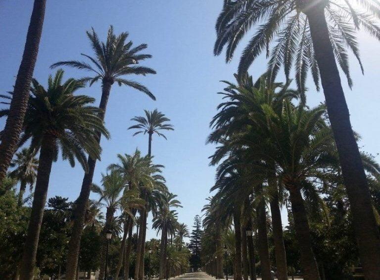 Cosas Para Visitar En Melilla