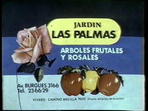 Jardin Las Palmas Melilla