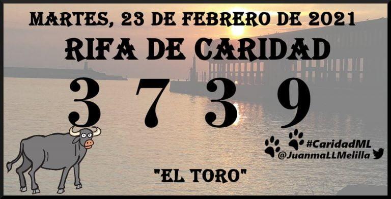 Numero Telefono Rifa Caridad Melilla