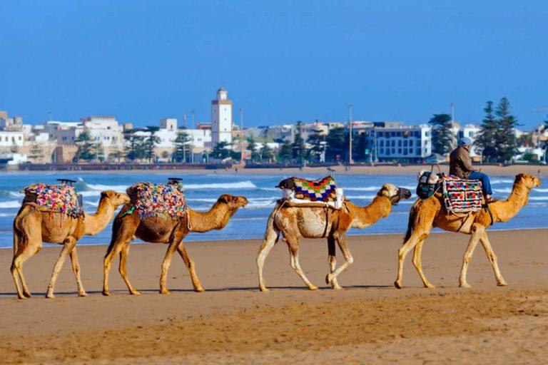 Que Ver En Marruecos Cerca De Melilla
