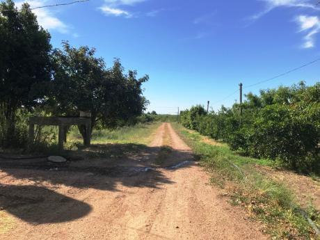 Venta De Casas En Melilla Uruguay