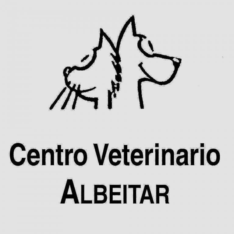 Veterinario Melilla